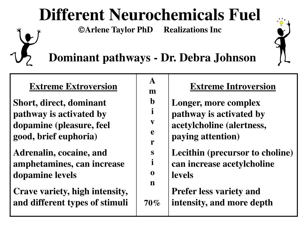 Different Neurochemicals Fuel