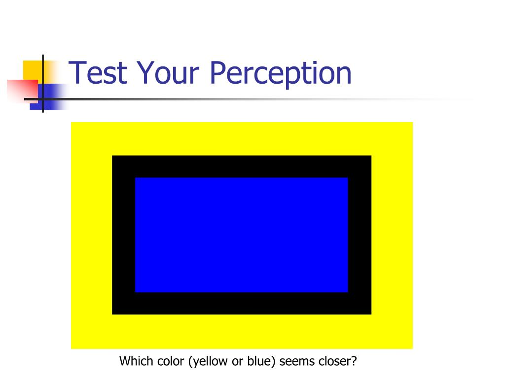 Test Your Perception