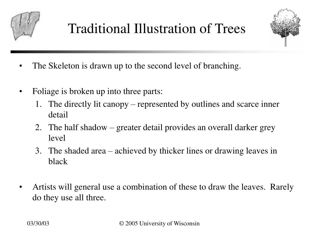 Traditional Illustration of Trees