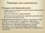 topologia sieci neuronowej
