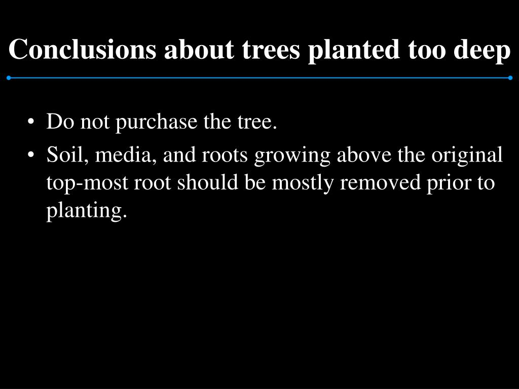 Conclusions about trees planted too deep