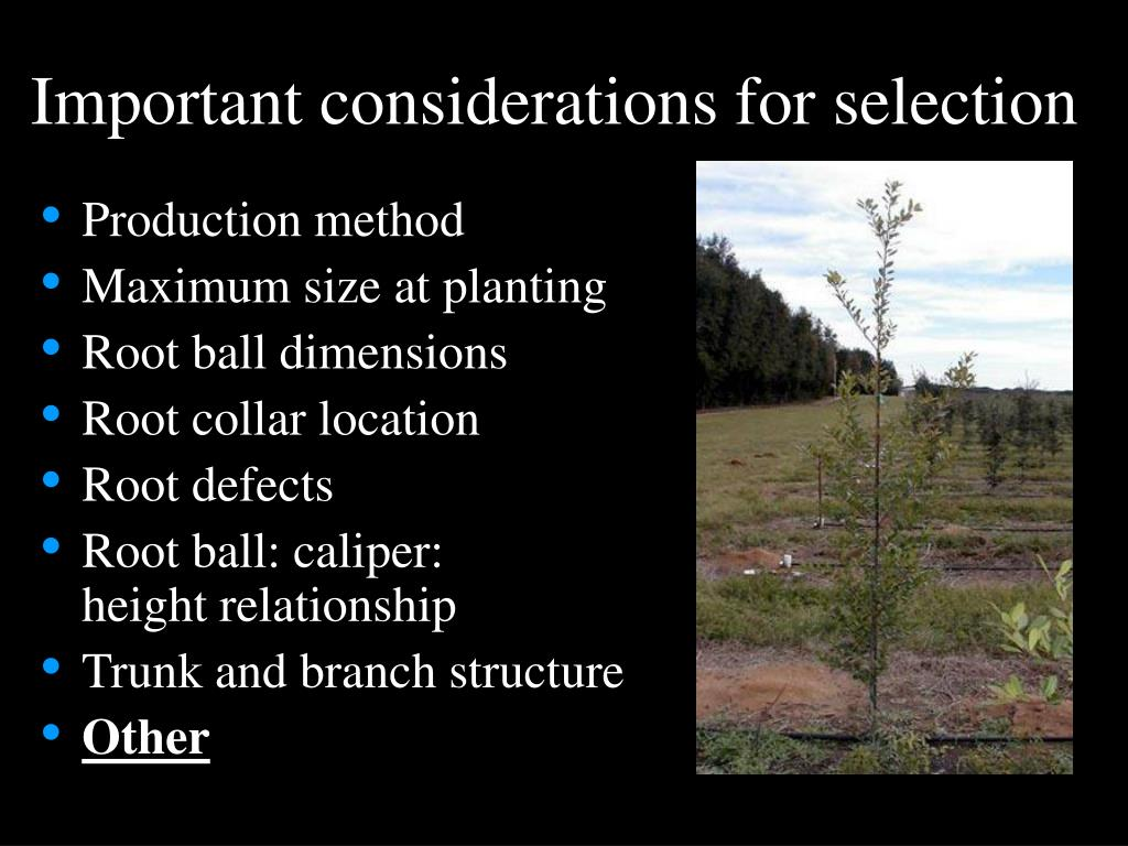 Important considerations for selection