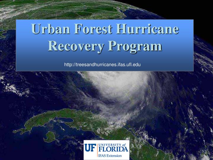 Urban Forest Hurricane Recovery Program