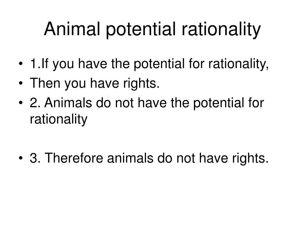 Animal potential rationality