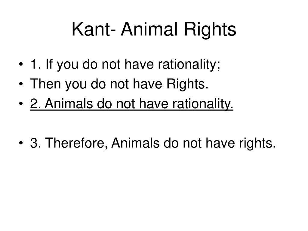 Kant- Animal Rights