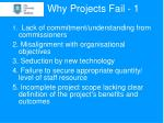 why projects fail 1