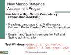 new mexico statewide assessment program18