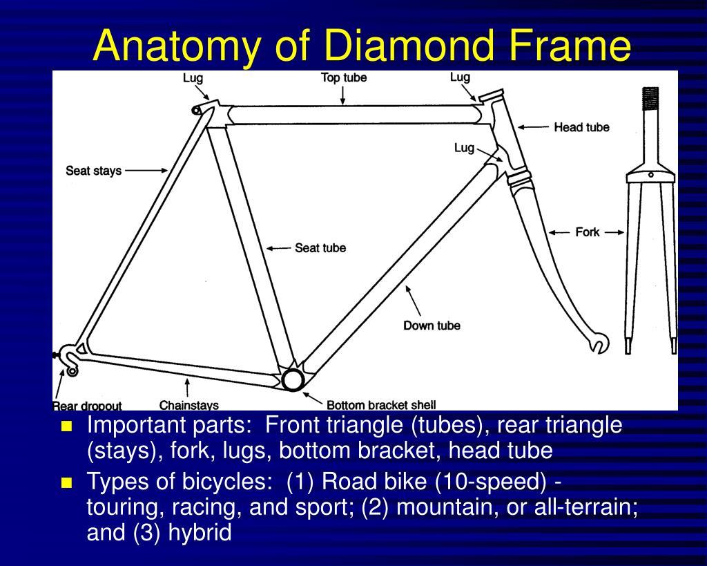 Anatomy of Diamond Frame