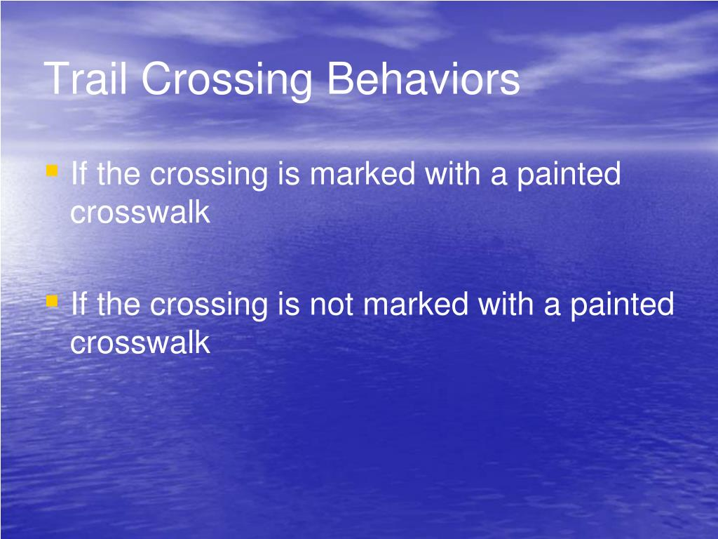 Trail Crossing Behaviors