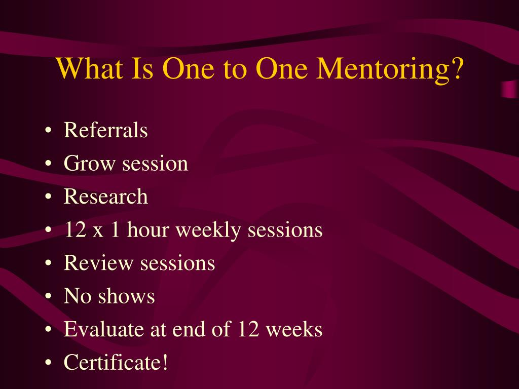 What Is One to One Mentoring?