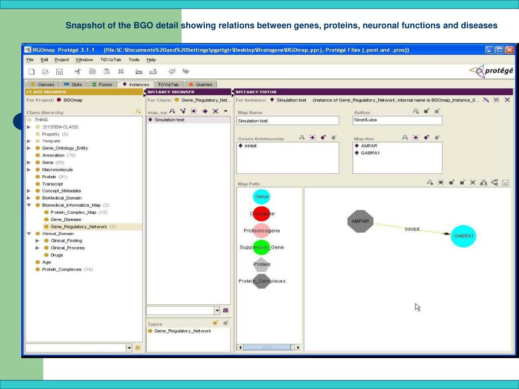 Snapshot of the BGO detail showing relations between genes, proteins, neuronal functions and diseases