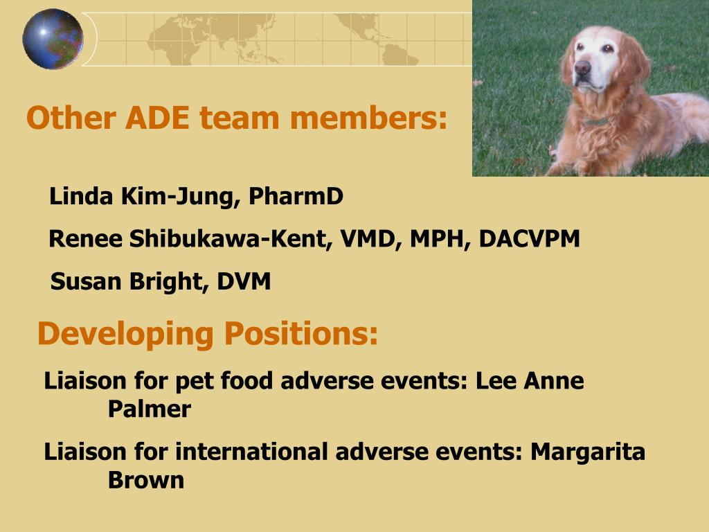 Other ADE team members: