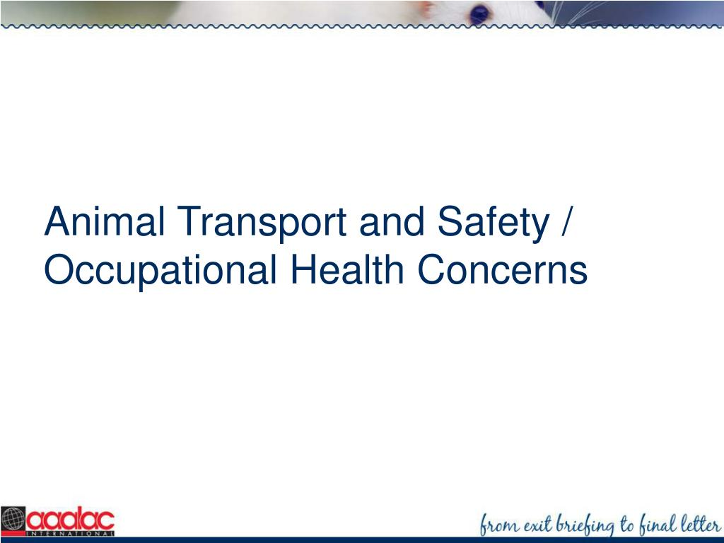Animal Transport and Safety / Occupational Health Concerns