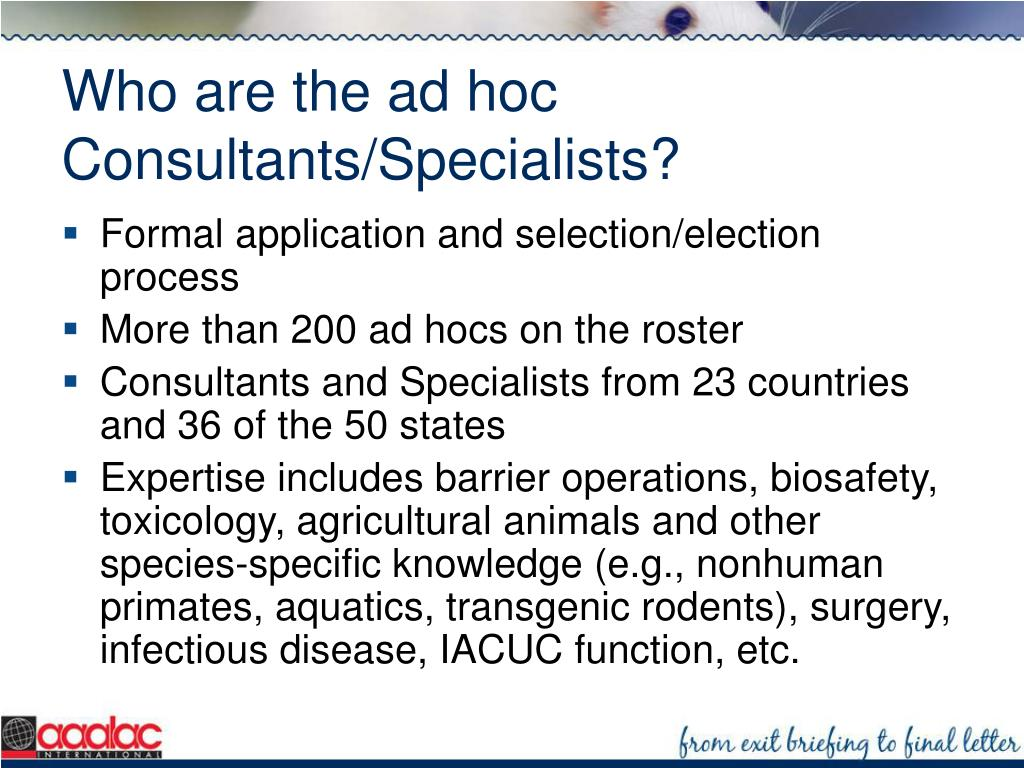 Who are the ad hoc Consultants/Specialists?
