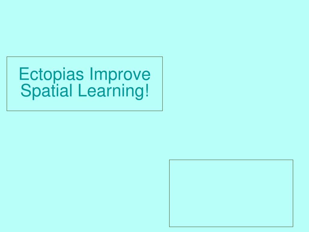 Ectopias Improve Spatial Learning!