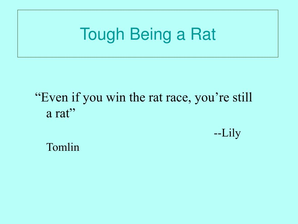 Tough Being a Rat