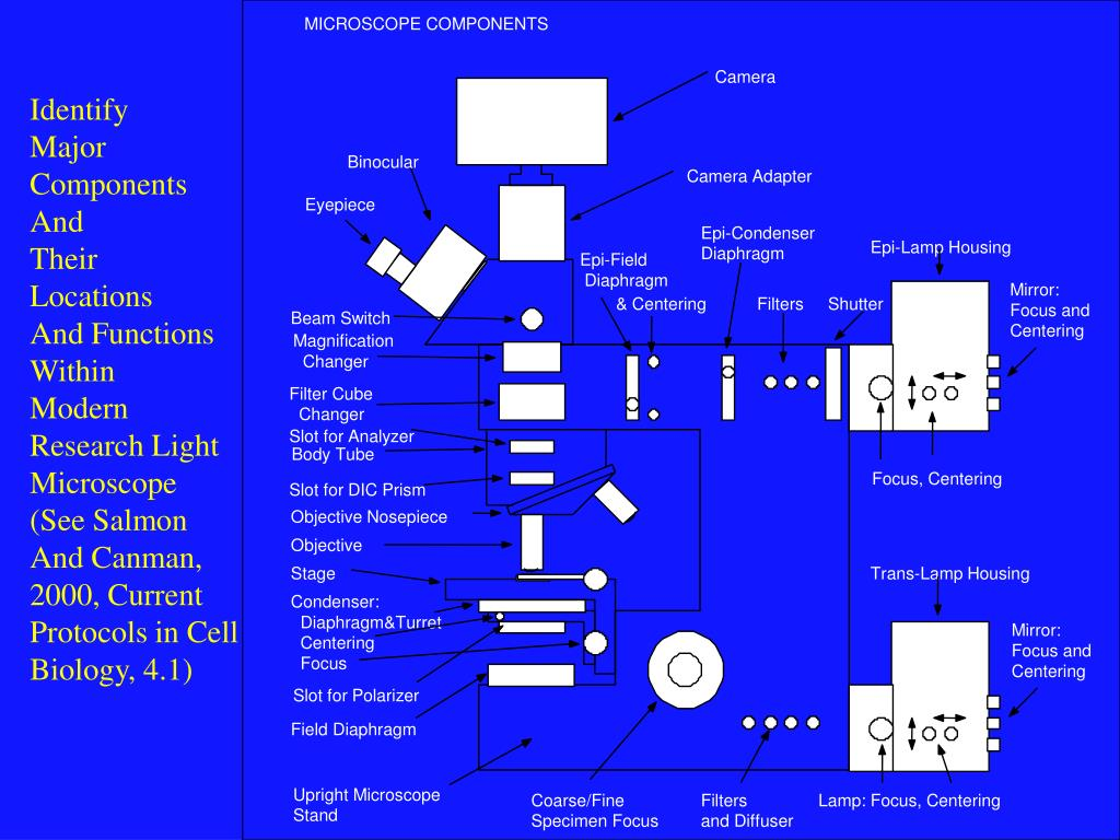 MICROSCOPE COMPONENTS