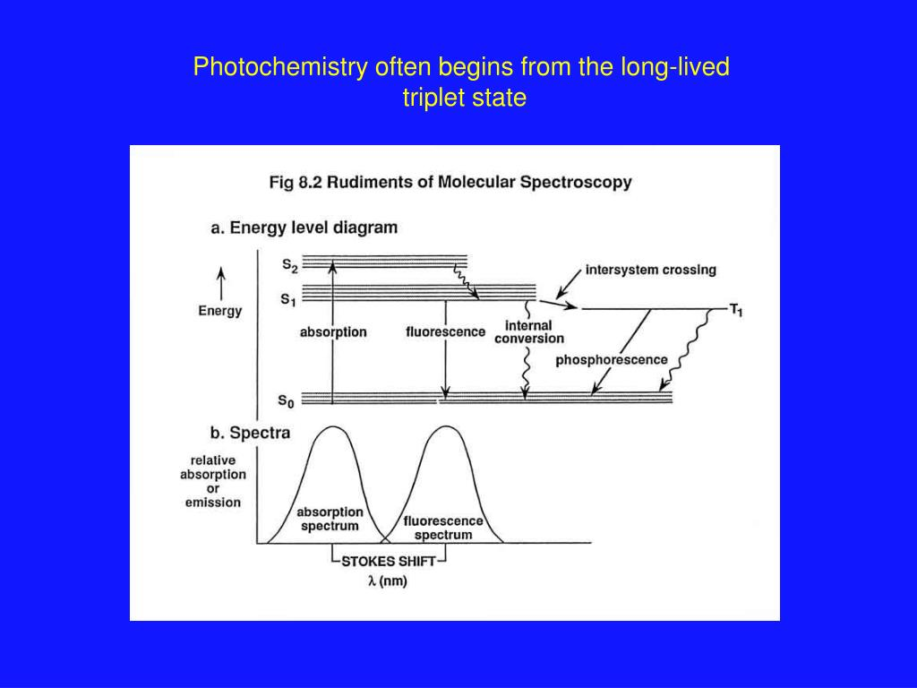 Photochemistry often begins from the long-lived