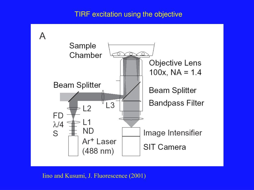 TIRF excitation using the objective
