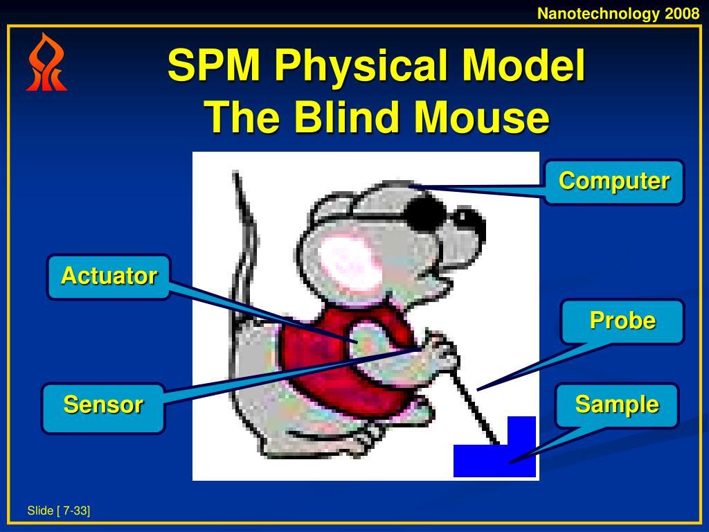 SPM Physical Model