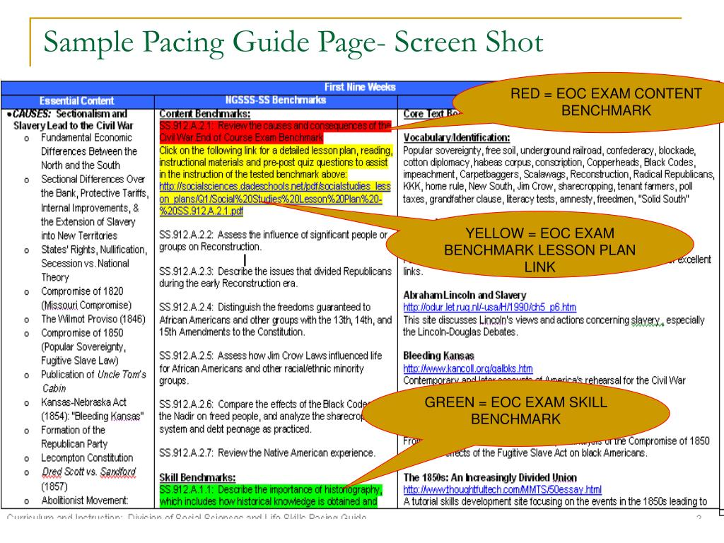 Sample Pacing Guide Page- Screen Shot