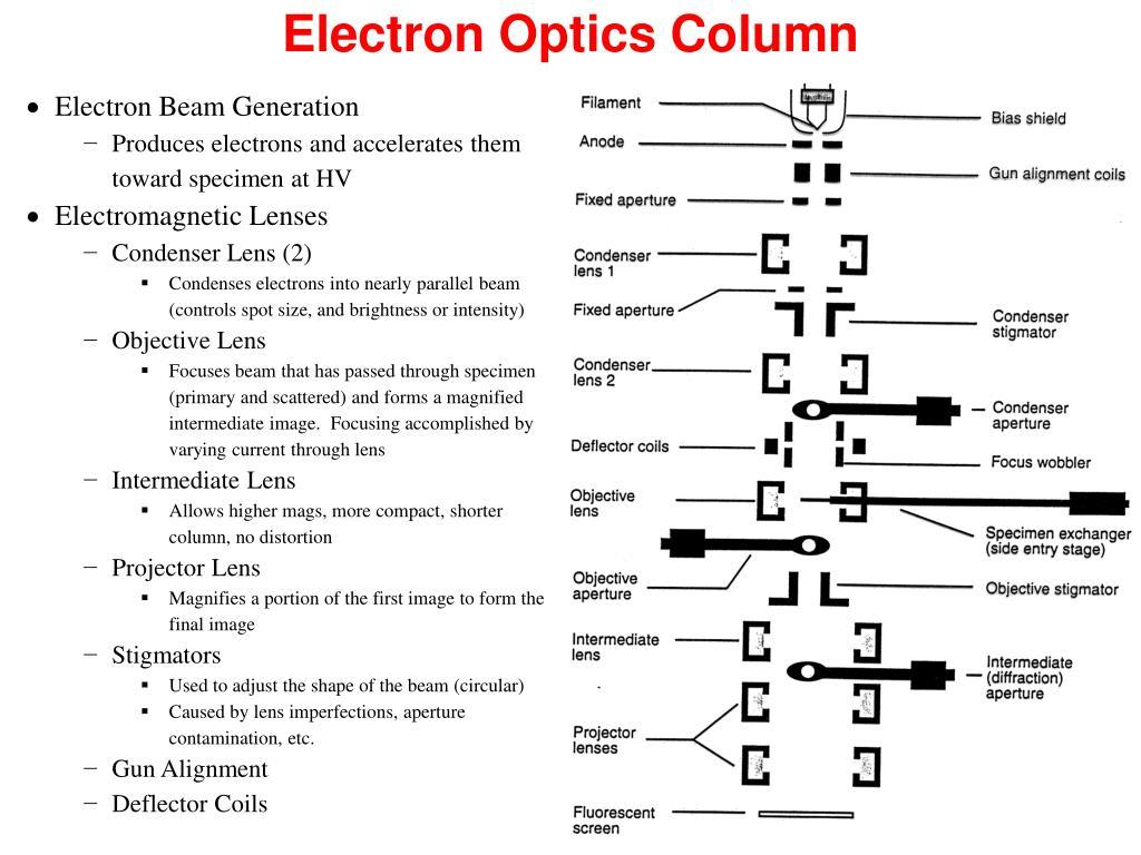 Electron Optics Column