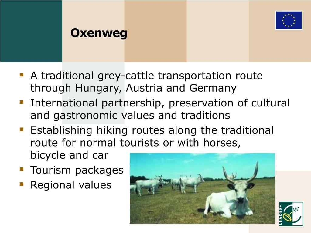 Oxenweg