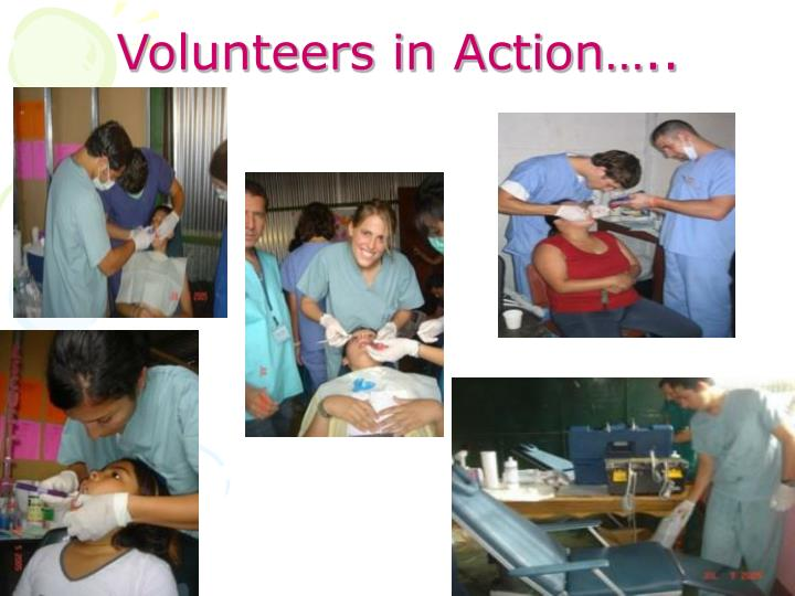 Volunteers in Action…..