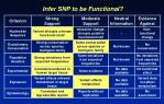 infer snp to be functional