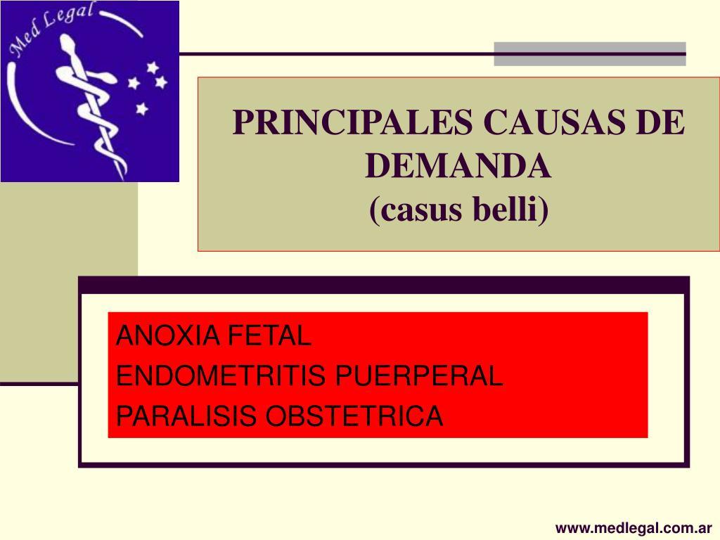 PRINCIPALES CAUSAS DE DEMANDA