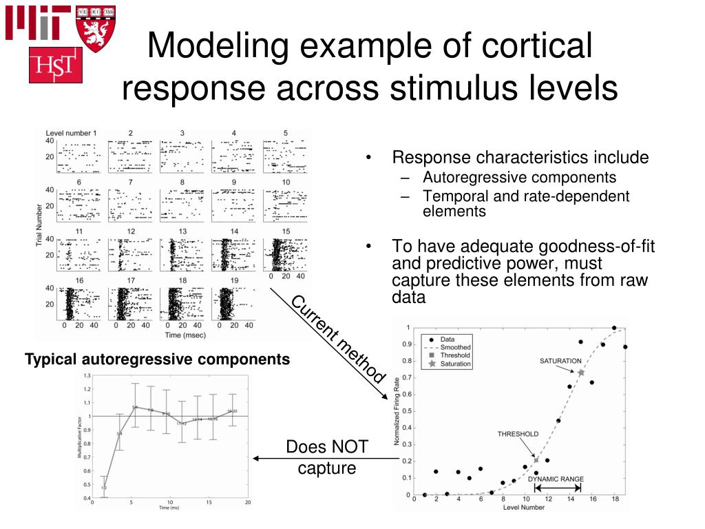 Modeling example of cortical response across stimulus levels