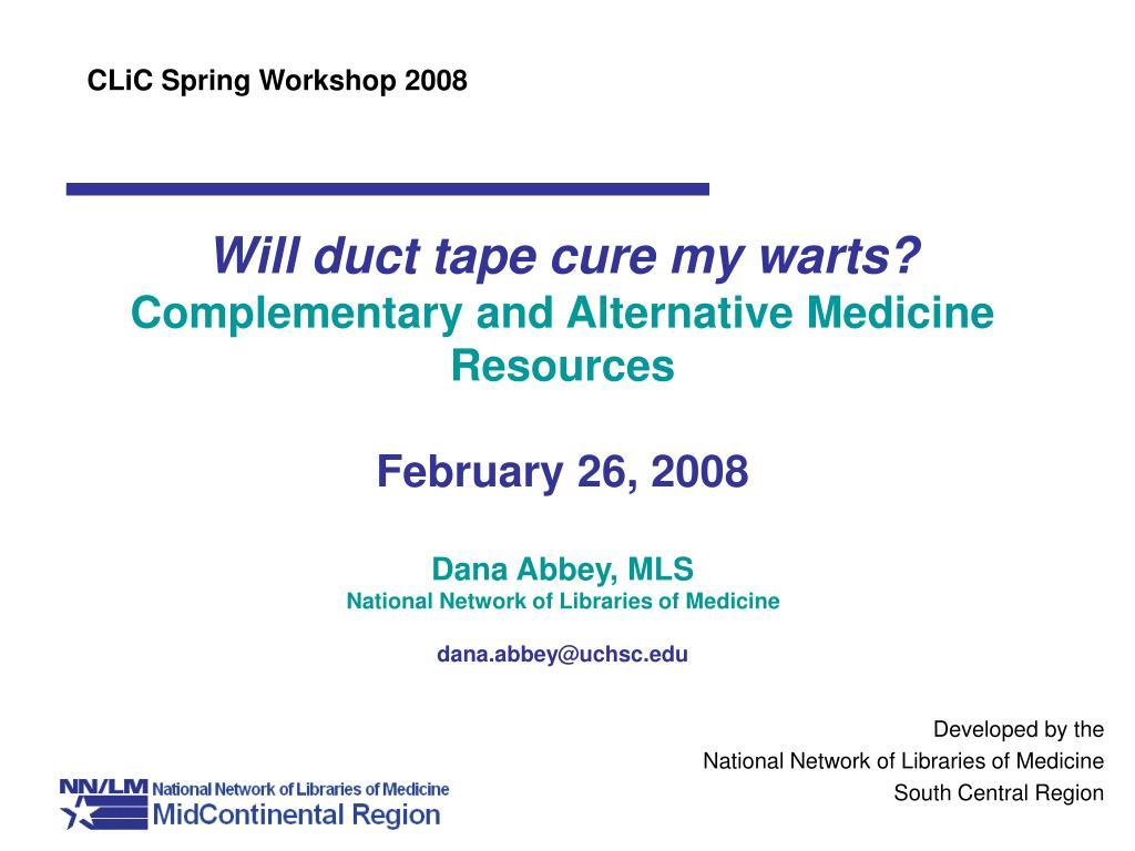 CLiC Spring Workshop 2008