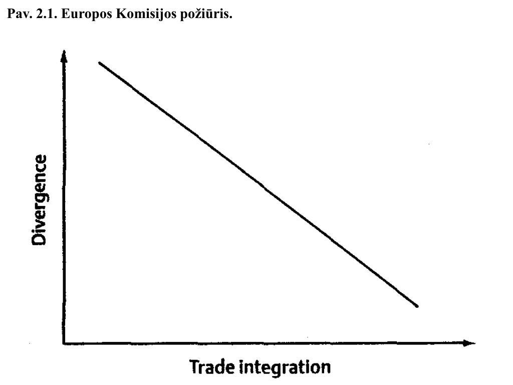 Pav. 2.1. Europos Komisijos požiūris.