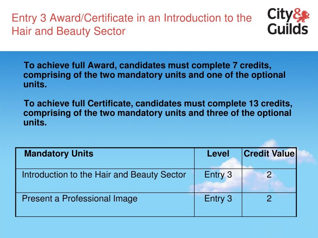 Entry 3 Award/Certificate in an Introduction to the Hair and Beauty Sector