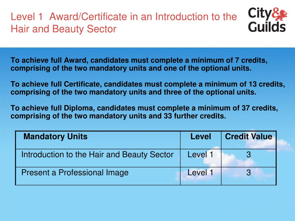 Level 1  Award/Certificate in an Introduction to the Hair and Beauty Sector