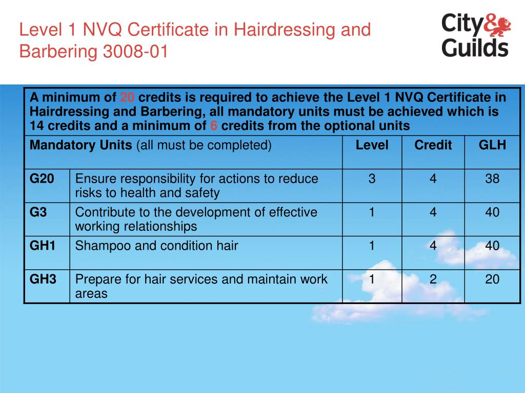 Level 1 NVQ Certificate in Hairdressing and Barbering 3008-01