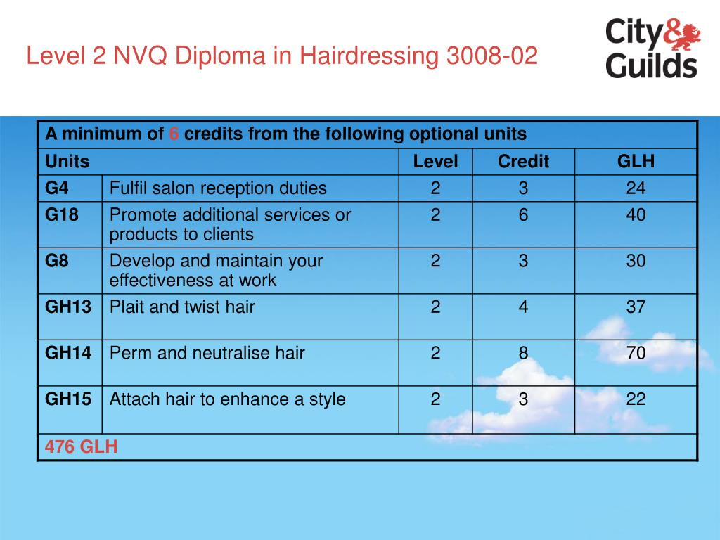 Level 2 NVQ Diploma in Hairdressing 3008-02