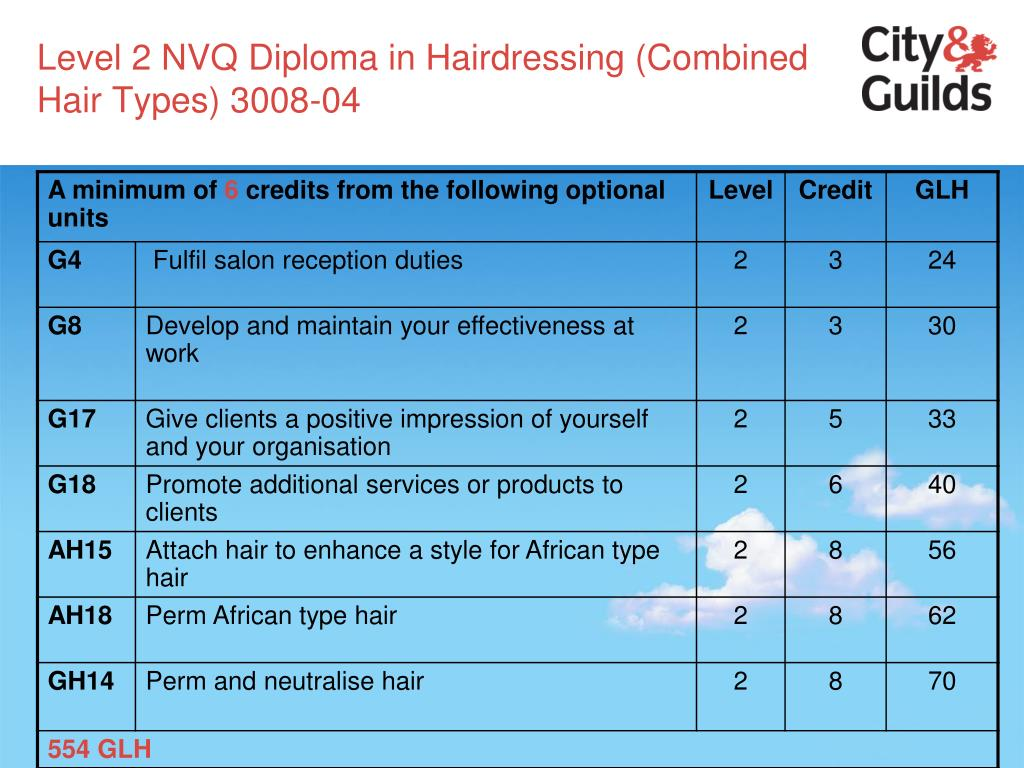 Level 2 NVQ Diploma in Hairdressing (Combined Hair Types) 3008-04