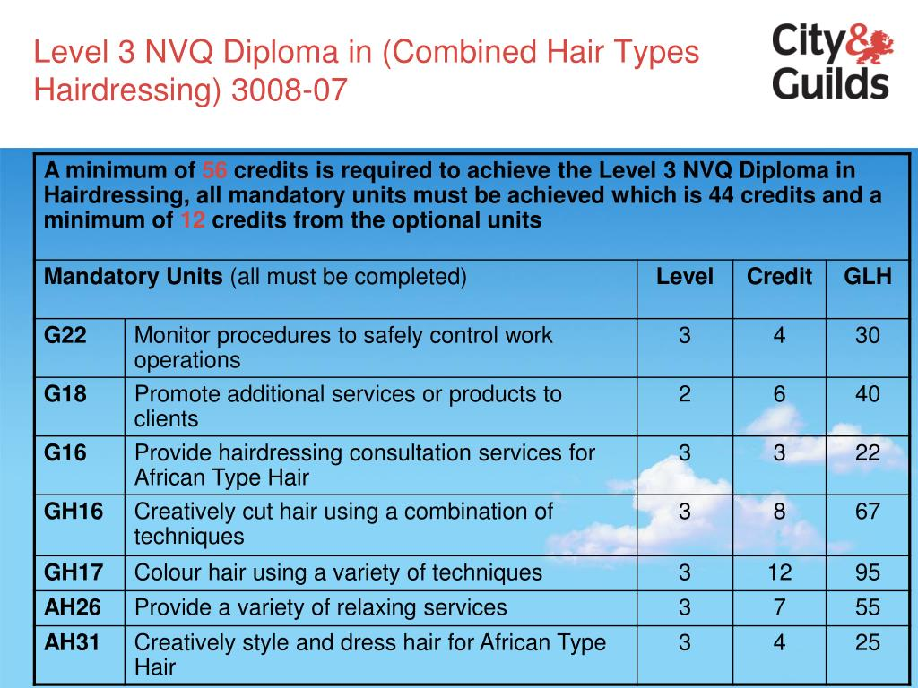 Level 3 NVQ Diploma in (Combined Hair Types Hairdressing) 3008-07
