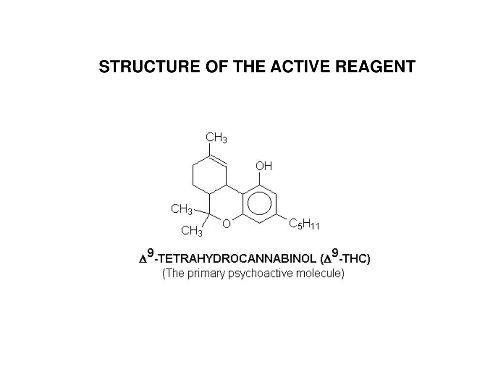 STRUCTURE OF THE ACTIVE REAGENT