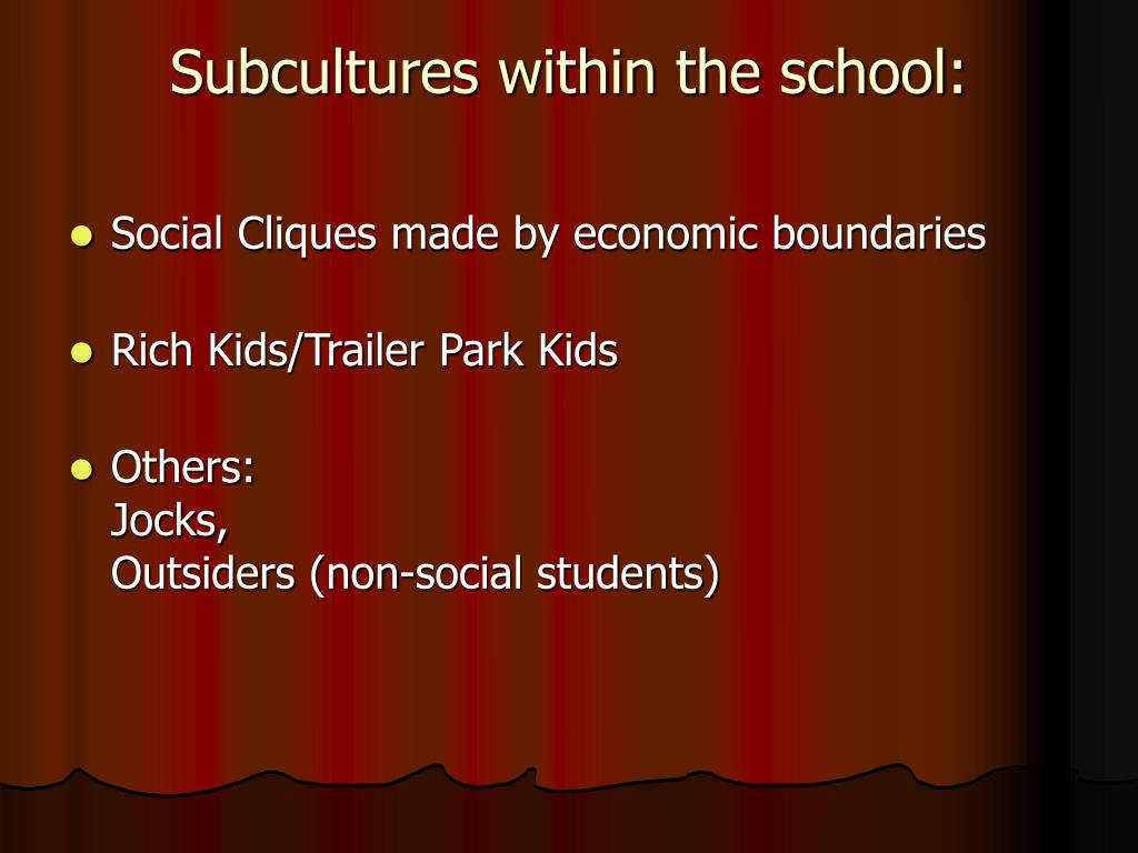 Subcultures within the school: