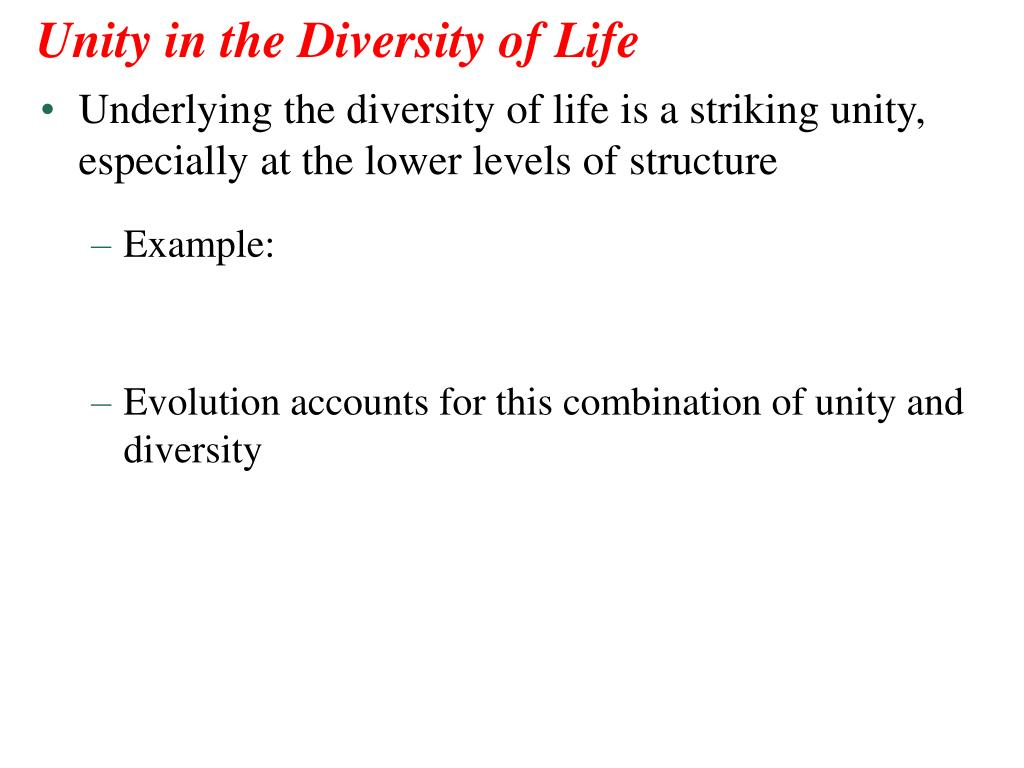 diversity essay evolution life selected Surviving in this immense diversity of habitats depended not on specific laboratory findings dovetail with field work in small communities that examines how people aggregate different cues to select their recognizing the centrality of culture in human life leads to a novel.
