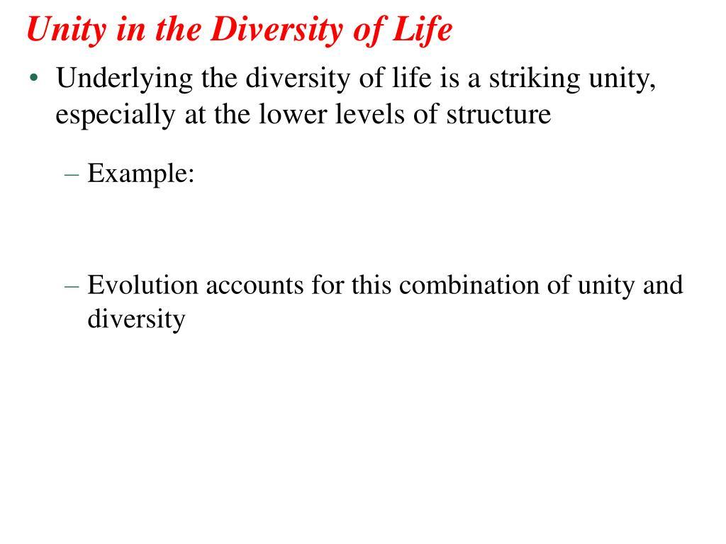 origin and diversity of life essays