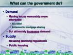 what can the government do32