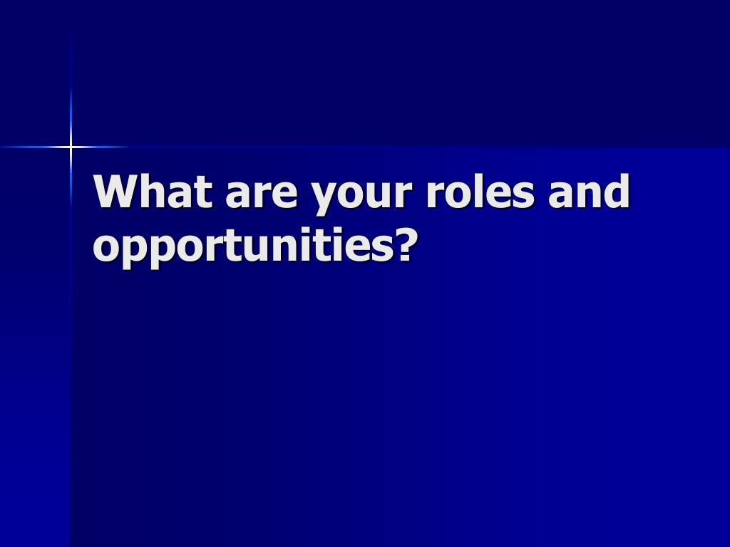 What are your roles and opportunities?
