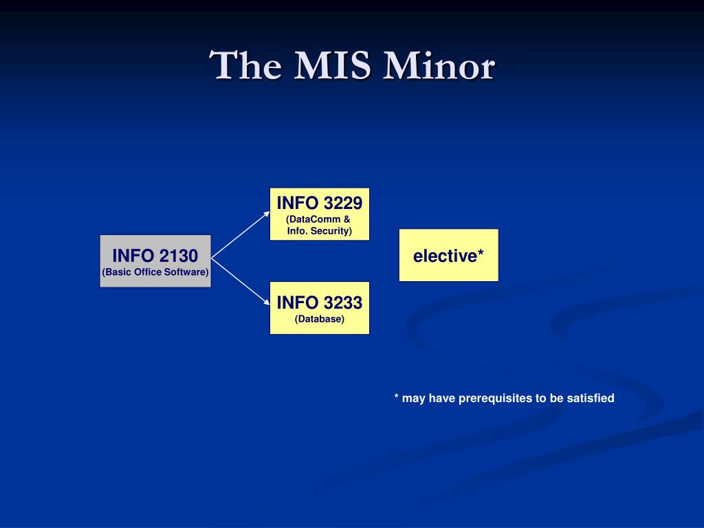 The MIS Minor