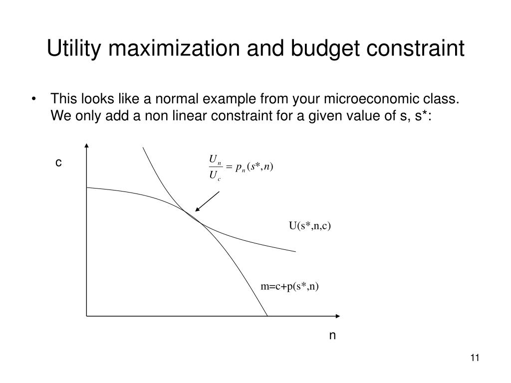 Utility maximization and budget constraint