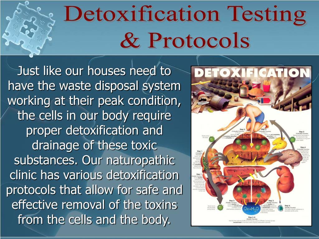 Detoxification Testing