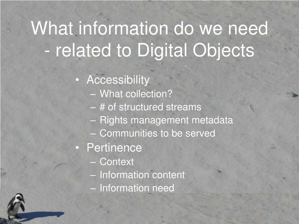 What information do we need - related to Digital Objects