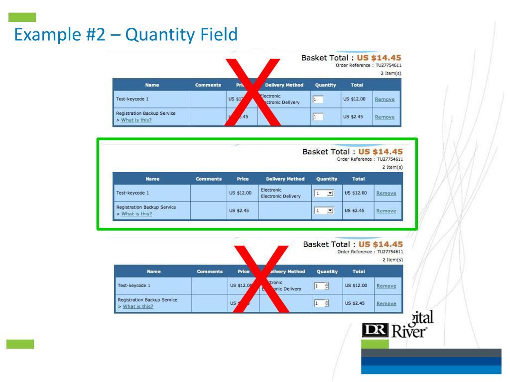 Example #2 – Quantity Field